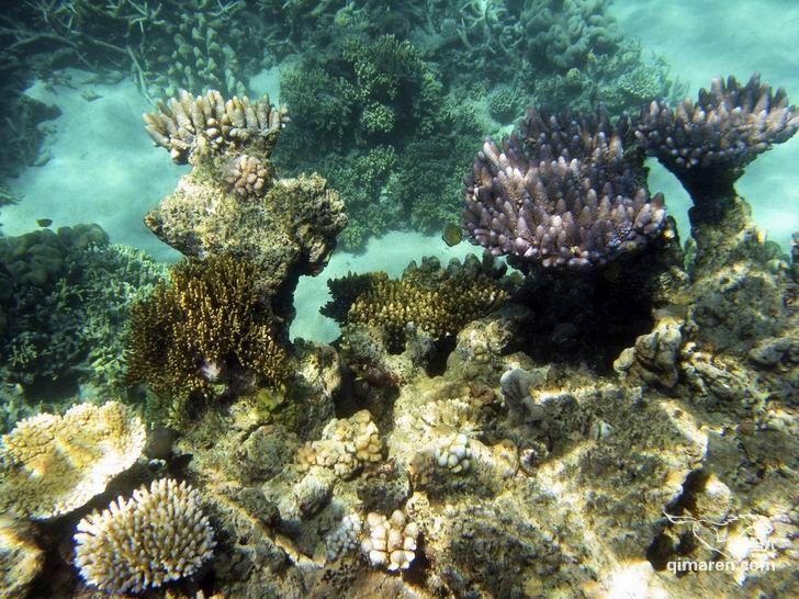 落筆洞旅游風景區 三亞國家珊瑚礁自然保護區