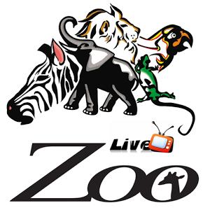走进动物园 live cams